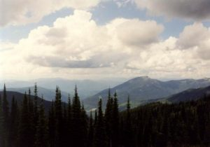 <b>View From The Lookout Tower</b>