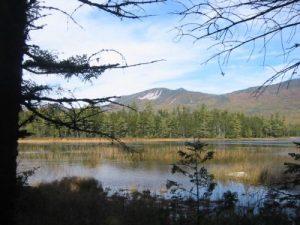 <b>Grassy Pond</b>