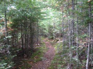 <b>Appalachian Trail</b>