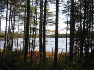 <b>Elbow Pond</b>