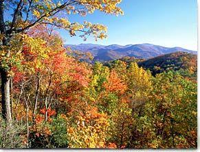 <b>Ridge Views In Black Mountain State Park</b>