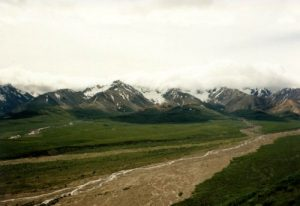 Denali National Park - Zone 31 And 32