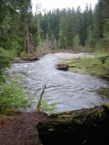 <b>The Sol Duc River</b>