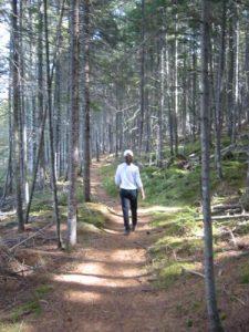 <b>The Trail Near Grassy Pond</b>