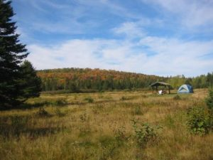 <b>A Meadow Campsite At Nesowadnehunk Campground</b>