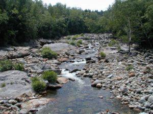 <b>Stream Near The Trail At NH 16</b>