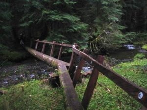 <b>Bridge On Lover's Lane Trail</b><br> The Lover's Lane Trail loops around the Sol Duc Hot Springs Resort Area.