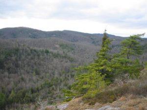 <b>Another View Near Big Green Mountain</b>