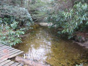 <b>The Creek From Schoolhouse Falls</b>