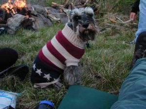 <b>Biz's Sweater</b>