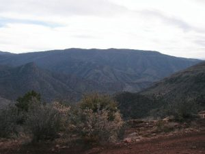 <b>Looking North from near the top</b><br> There is lots more forest north of Magdalena, with lots more mines to see.