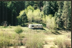 Big Bear Canyon - White Mountain Wilderness