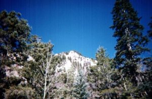 <b>Looking North from the streambed</b><br> As you head up the canyon, it gets narrower and steeper.