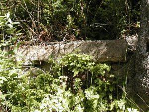Oliver Lee State Park - June 18, 2005
