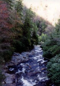 <b>View From The Suspension Bridge (Top Of The Falls)</b>