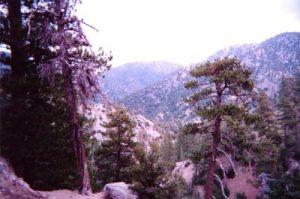 <b>The San Garbiels From The Buckhart Trail</b>