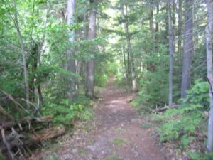 <b>The A.T. Near Rattle River Shelter</b><br> The trail is a pleasure cruise in this area as it hugs the Rattle River.