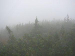 White Mountain National Forest - Mt. Morrah - September 23, 2005