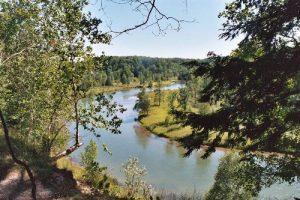 Manistee River Trail Loop