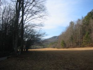 <b>Cataloochee Valley</b><br> We saw four wild turkeys in this field on Friday morning before we started our hike.