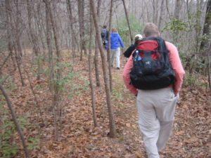 <b>On The Trail</b>