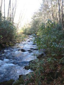 <b>Palmer Creek</b><br> This is Palmer Creek along the Pretty Hollow Gap Trail.