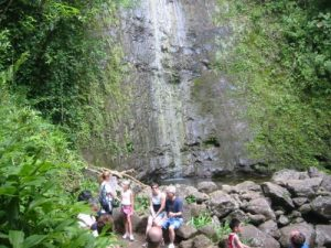<b>Manoa Falls</b><br> Here's a look at Manoa Falls from the base. It was dry when we visited and the falls were not that impressive.