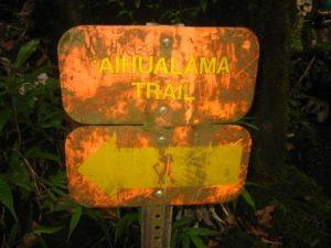 <b>Weathered Trailsign</b><br> This is the weathered trailsign at the base of Manoa Falls where the Aihualama Trail begins.