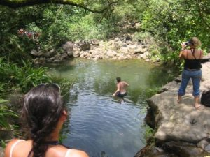 Koolau Forest Reserve - Waikamoi Falls