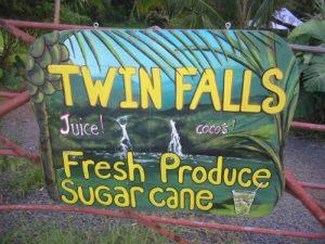 Koolau Forest Preserve - Twin Falls