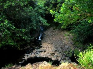 <b>Hoolawa Stream</b>