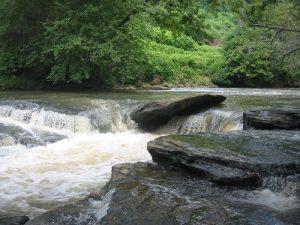 <b>Vickery Creek</b>