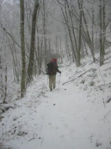 <b>Descending Along The Bote Mountain Trail</b><br> It snowed the entire hike down the mountain with about an inch in the higher elevations.