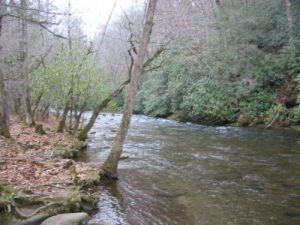 <b>Deep Creek</b><br> The drainage of Deep Creek located a short distance from the parking area.