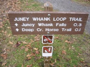 <b>The Trailhead</b><br> This is the start of the Juney Whank loop trail at the Deep Creek parking area.