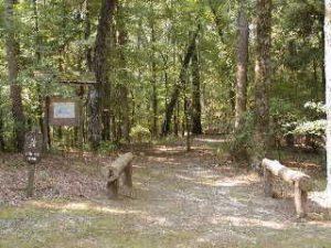 Hugh White State Park Trail System