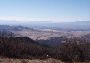 Turkey Creek - White Mountain Wilderness - March 17, 2007