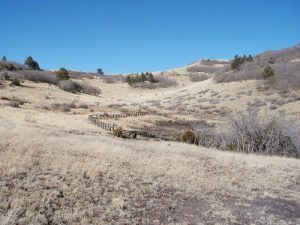 <b>Sprign in the High Country</b><br> Looking uphill past the springs towards the crest.