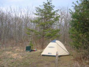 <b>Springer Campground</b><br> Our campsite near Springer Mountain.