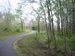 <b>Paved Trail</b><br> The paved portion of the Nature Trail looking east toward the viewing platforms.