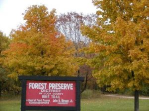 <b>Busse Forest</b><br> Fall colors at Busse Forest near Arlington Heights in Cook County.