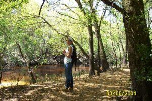 <b>Along the Little Manatee River Trail</b>