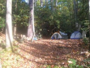 <b>Our Campsite</b><br> One of many campsites along Harper's Creek. We had no less than 30 people walk buy during our stay in October. Guess it's a popular area.