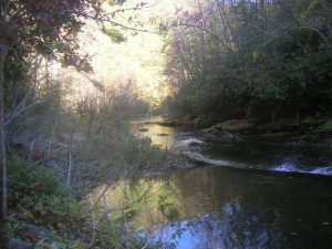 <b>Harper's Creek</b><br> Harper's Creek as seen from the trail a short distance from our campsite.