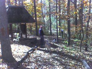 Dunwoody Nature Center - Woodland Loop Trail - November 23, 2007