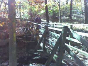 <b>Bridge At Wildcat Creek</b><br> A bridge over Wildcat Creek along the Yellow Trail.