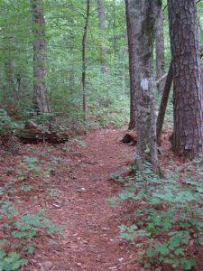 Hitchiti Trail Loop