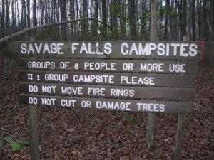 South Cumberland Recreation Area - Savage Falls - January 19, 2008