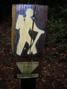 <b>The Palmetto Loop Trail</b><br> One of a few trail signs marking the Palmetto Loop Trail.