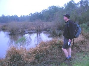 <b>Down On The Bayou</b><br> Admiring a bayou on the Palmetto Trail - one of the only expansive views on the hike.